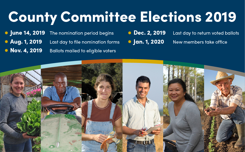 County Committee Elections
