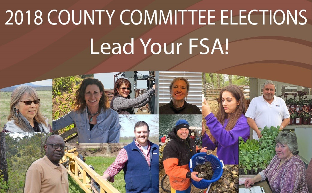 County Office Committee Elections