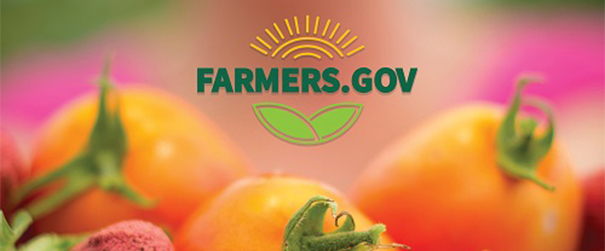 farmers.gov site logo overlaid on image of tomatoes