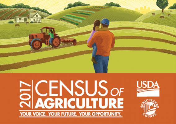 USDA Census of Agriculture button