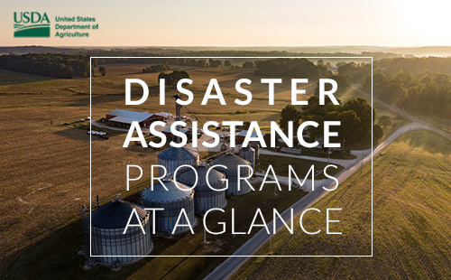 Disaster Assistance Program at a Glance