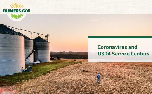 Farmers.gov Coronavirus and USDA Service Centers