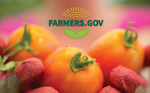 "For farmer stories and ""news you can use,"" visit the blog on Farmers.gov, USDA's new website built by farmers, for farmers."