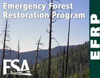 The Emergency Forest Restoration Program provides payments to eligible owners to restore land damaged by a natural disaster.