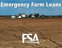 FSA provides Emergency Farm Loans to help producers recover from production and physical losses due to natural disasters or quarantine.