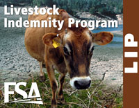 The Livestock Indemnity Program provides assistance to producers for livestock deaths that result from disaster.