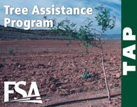 The Tree Assistance Program provides financial assistance to qualifying orchardists to replace trees, bushes, and vines damaged by natural disasters.