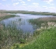 Wetland Restoration from MI Page